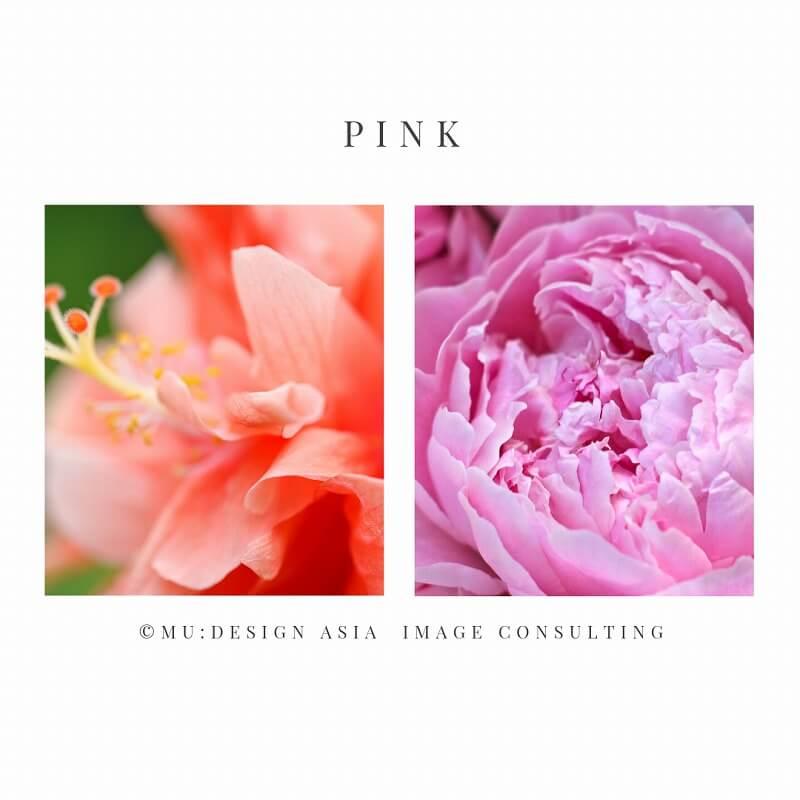 イエローベースとブルーベース(ピンク)